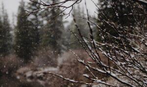inverno interiore